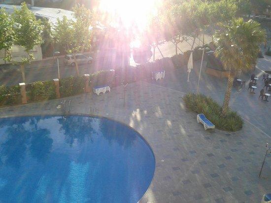 California Garden : view from balcony room 342
