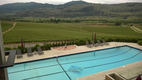 Burrowing Owl Estate Winery Guest House : swimming pool with a burrowing owl icon