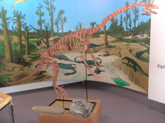 John Wesley Powell River History Museum: Dinosaur replica