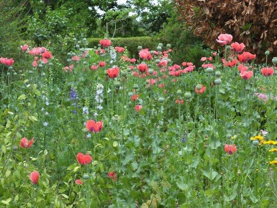Old Salem Museums & Gardens: Private Garden