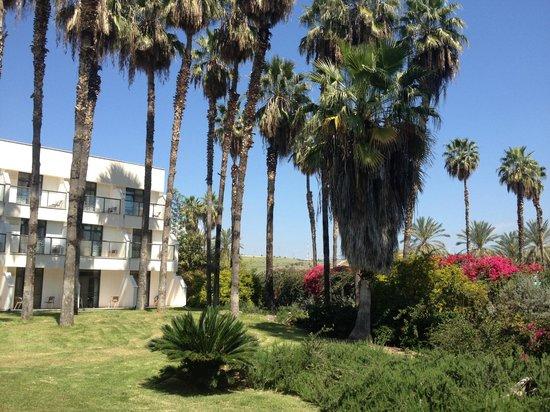 Karei Deshe: Back of hotel