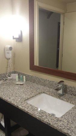 Comfort Suites University - Research Park: King Suite #503 bathroom