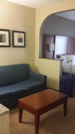 Comfort Suites University - Research Park: King suite #503