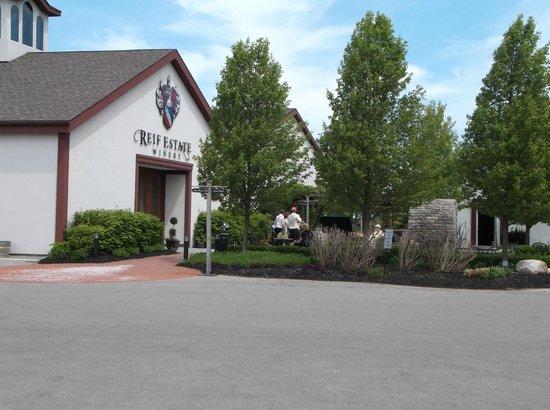 Niagara Grape & Wine Tours: Reif Vineyard