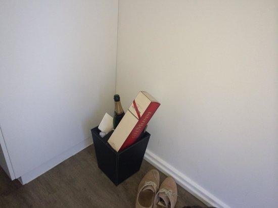 Ovolo Laneways: The 'emptied' bin.......