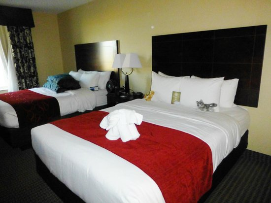 Comfort Suites Hotel & Convention Center Rapid City : 1