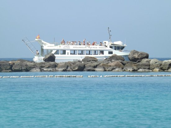 Hotel Altamadores: View of the glass bottom boat to Puerta Mogan