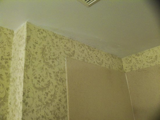 Sleep Inn & Suites: attempt to cover mold in shower