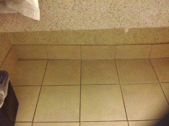 Sleep Inn & Suites: wall actually bowing below sink
