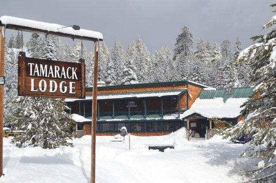 Tamarack Lodge At Bear Valley : Main Lodge View from Hwy 4