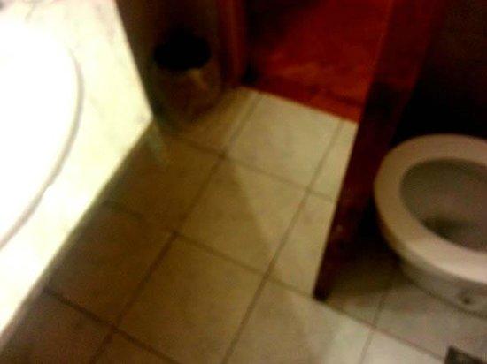Hotel Sheltown: A la izq. borde del lavatorio y a la dcha. la puerta del baño que se topa con el water.