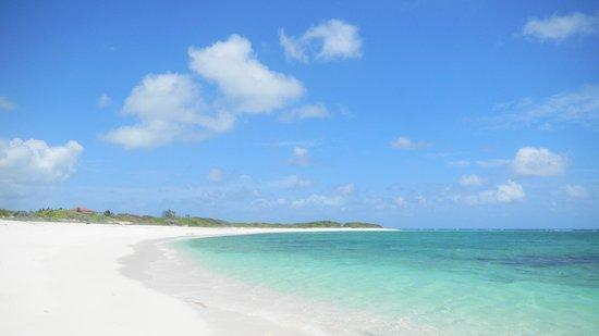Anegada Island: Lobolly Bay