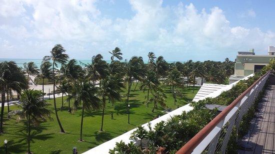 South Beach : View of Sth Beach park area between beach and Ocean Drv