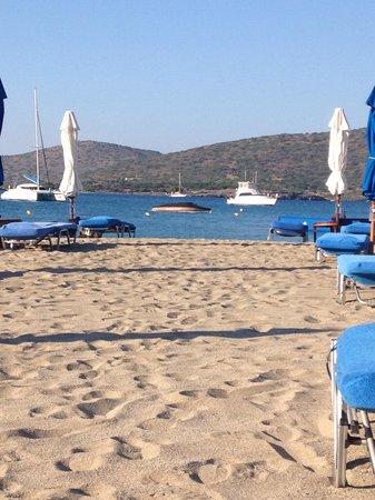 Elounda Beach Hotel & Villas : Cleanest beach & safe swimming