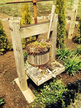 Westport Winery: Wine themed garden area.