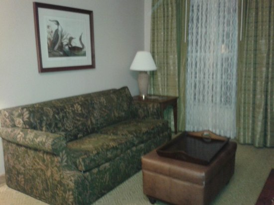 Homewood Suites by Hilton Baltimore-BWI Airport: Zona de Living muy confortable