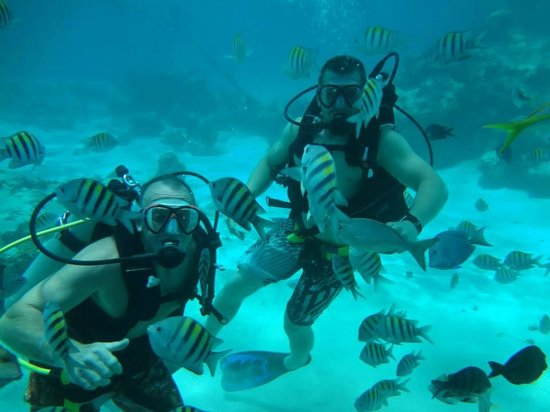 SeaPro Water Sports: Diving in Punta Cana