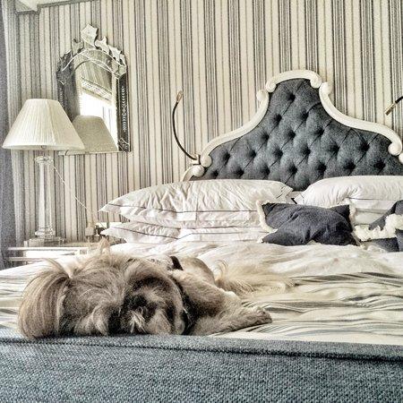 The Duke of Richmond Hotel: So comfy... Loving it