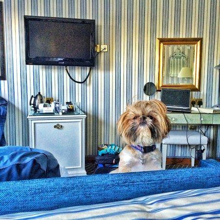 The Duke of Richmond Hotel: Izo Loves the room!