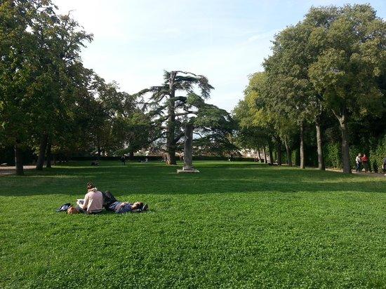 Palazzo Pitti: парк