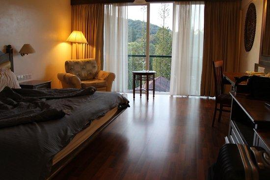 Hotel De' La Ferns: kamer