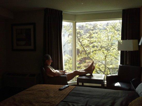 Ramada Plaza Niagara Falls: large window
