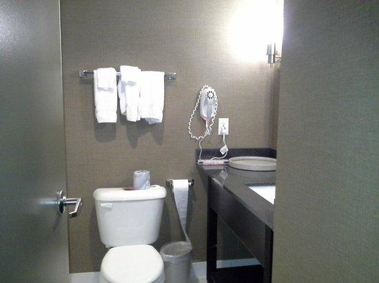 Ramada Plaza Niagara Falls: bathroom