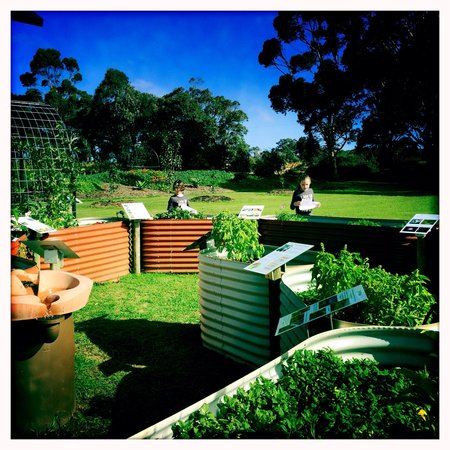 Cullen Wines - Cullen Restaurant: Kids enjoying the spiral garden.....