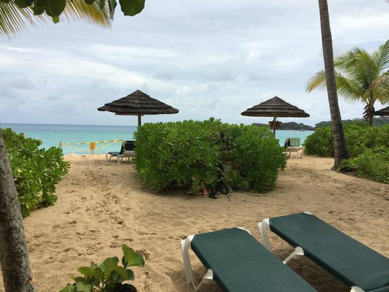Galley Bay Resort: view from room, yellow tape is sea turtle nest