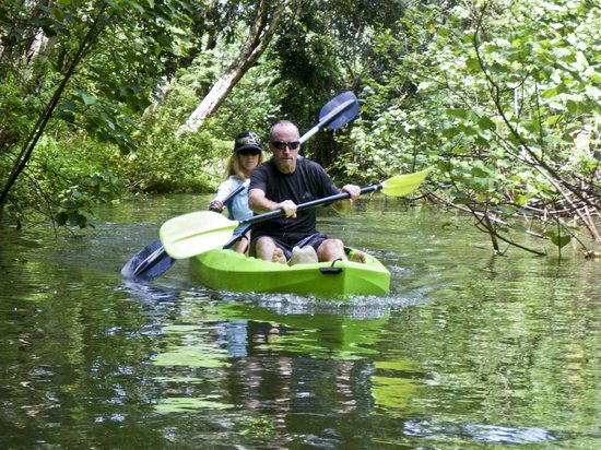 Active Oahu Tours: Kayaking up a Rainforest River