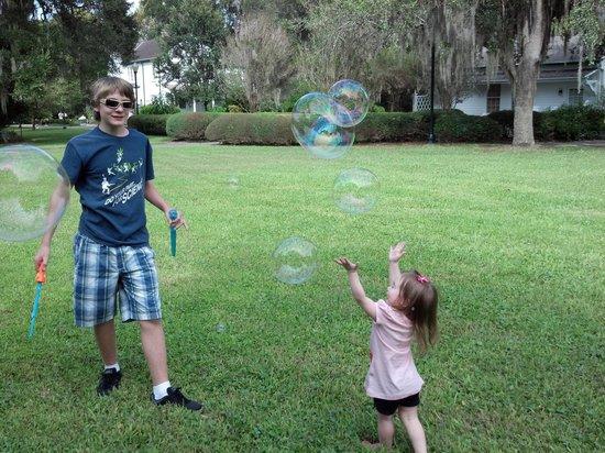 Harry P. Leu Gardens: Picnic fun!