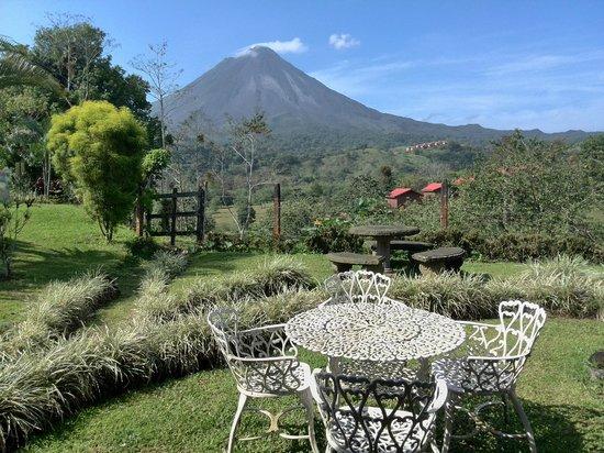 Arenal Palace: Vista desde el pequeño cafe.