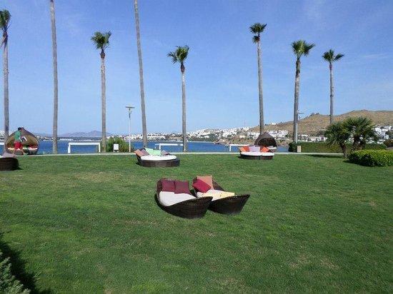 Kefaluka Resort : Lush