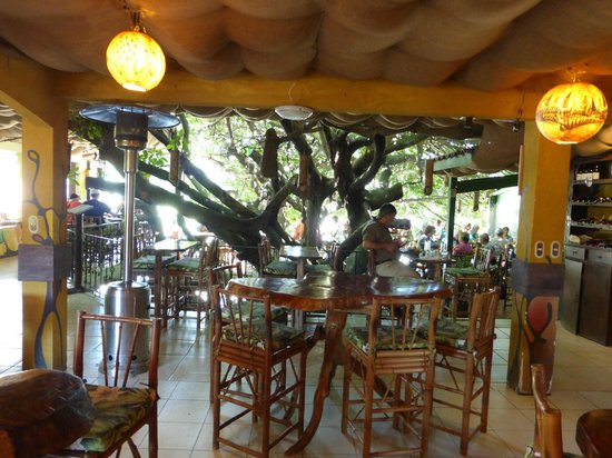 Tree House Restaurante & Cafe: overview of seating