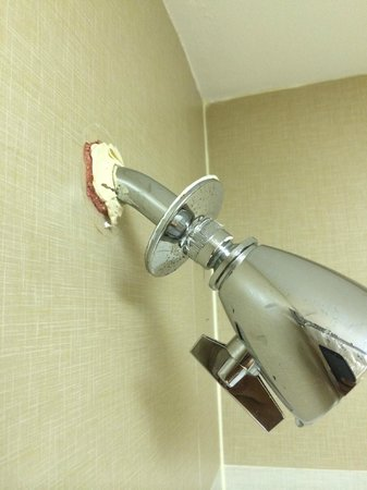 Hilton Orlando Lake Buena Vista - Disney Springs™ Area : Shower Head