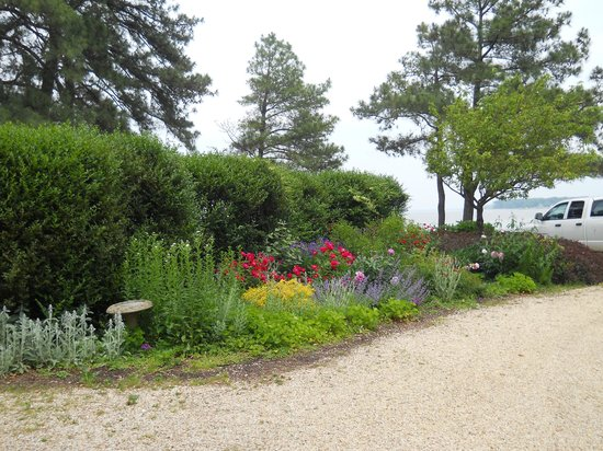 Wades Point Inn on the Bay: Garden by the main house driveway