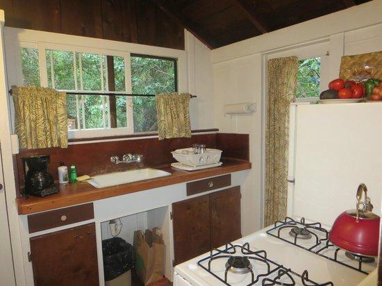 Ripplewood Resort: kitchen has dishes/flatware/pans