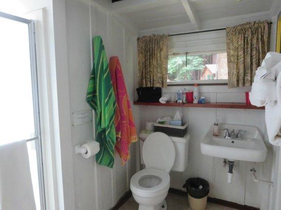 Ripplewood Resort: big bathroom