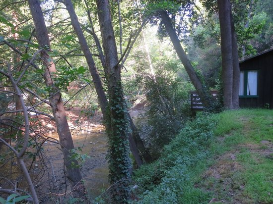 Ripplewood Resort : view