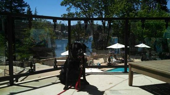 Lake Arrowhead Resort and Spa, Autograph Collection : On the deck above pool area