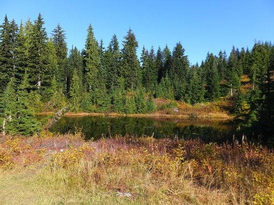 Cypress Mountain: First Lake