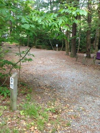 Cascade Lake Recreation Area: Camp Site D11