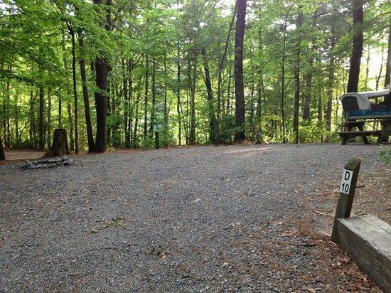 Cascade Lake Recreation Area: Camp Site D10