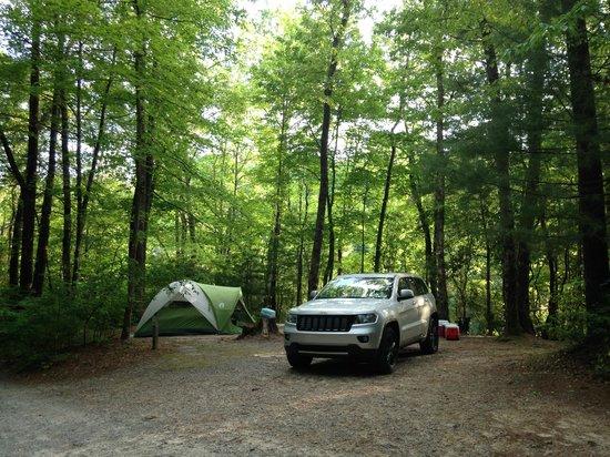 Cascade Lake Recreation Area: Camp Site D15