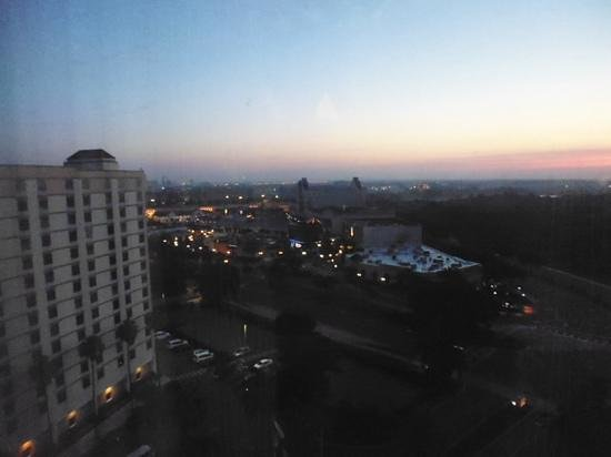 Rosen Plaza Hotel: view from 1456