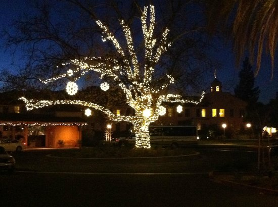 "Fairmont Sonoma Mission Inn & Spa: ""Christmas tree"" all lit up"