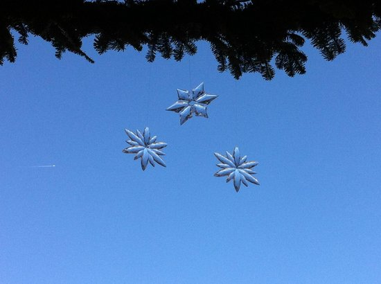 Fairmont Sonoma Mission Inn & Spa: Cute little glass stars hanging from a tree