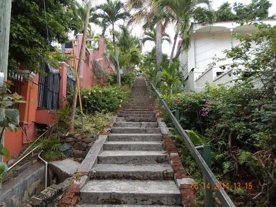 99 Steps: Looking up!