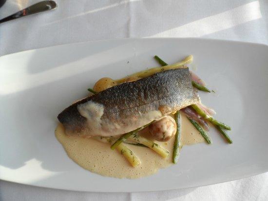 Toftaholm Herrgard Hotel: Dinner