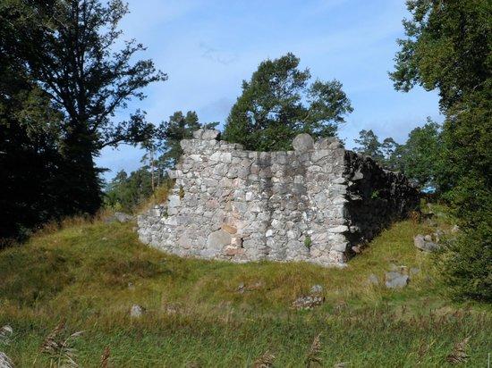 Toftaholm Herrgard Hotel: Ruin